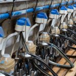 Automated Milking Systems