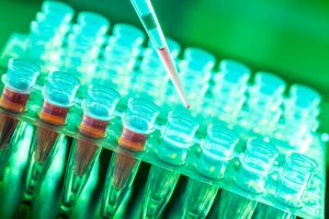 Photothermal Cancer Therapy Advancements