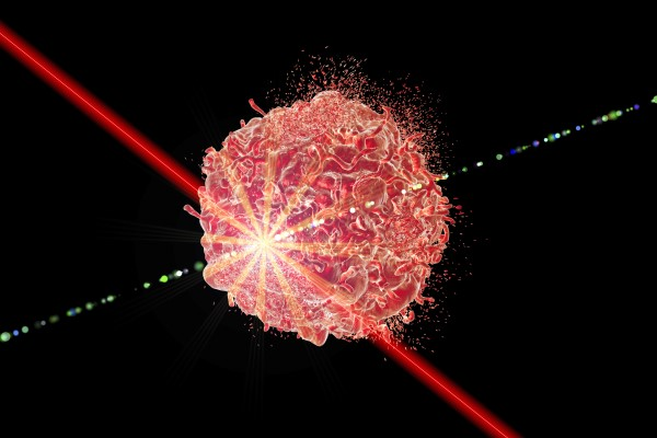 Biomedical Lasers and Cameras